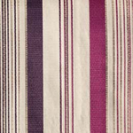 Striped Plum