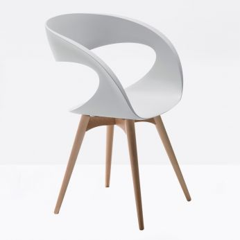 Raff-L - Wooden chair with padded or technopolymer seat