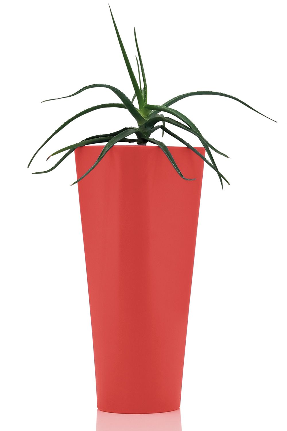 Eve Polyethylene Coral Red Version Tall