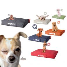 Doggielounge Small - Fatboy pillow for dog, removable cover, with customizable name, different coatings and colors available, small size