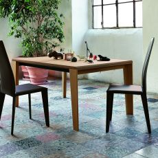 Aspen - Colico Design table made of wood, rectangular, extendible 160(320)x100 cm, several colours available