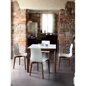 Gel-L - Chairs made of ash wood with white SAN seat